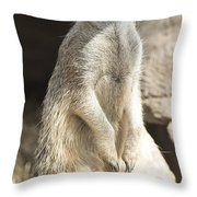Deligence Throw Pillow