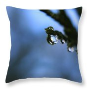 Delighted By Droplets Throw Pillow