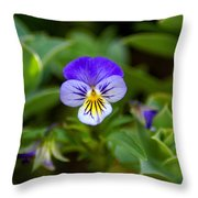 Delightful Colors Throw Pillow