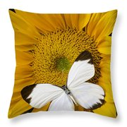 Delightful White Butterfly Throw Pillow