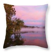 Delightfully Pink Morning Throw Pillow