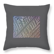 Deliniated  Throw Pillow