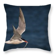 Delivery  4398 Throw Pillow