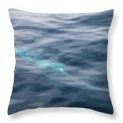 Delphin 1 The Mermaid Throw Pillow