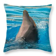 Delphin 2 Throw Pillow