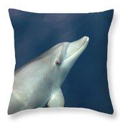Delphin 3 Throw Pillow