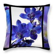 Delphinium Study Throw Pillow