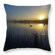 Delta Lakes Throw Pillow