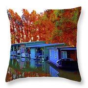 Delta Light And Reflections Throw Pillow