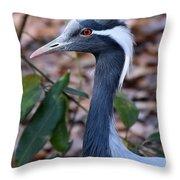 Demoiselle Crane Throw Pillow