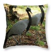 Demoiselle Cranes Throw Pillow