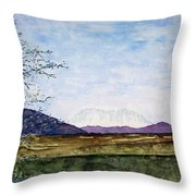 Denali In July Throw Pillow