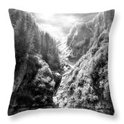 Denali National Park 2 Throw Pillow