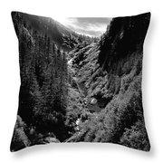 Denali National Park 3 Throw Pillow