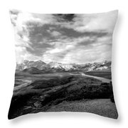 Denali National Park 4 Throw Pillow