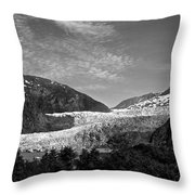 Denali National Park 6 Throw Pillow