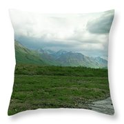 Denali National Park Landscape 2 Throw Pillow