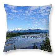 Denali State Park Throw Pillow