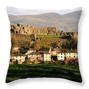 Denbigh Castle Throw Pillow