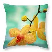 Dendrobium Throw Pillow