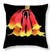 Dendrobium Lawesii Throw Pillow