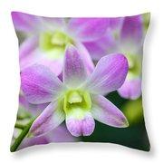 Dendrobium Orchids Throw Pillow