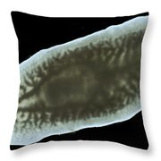 Dendrocoelum Lacteum, Microscope Throw Pillow