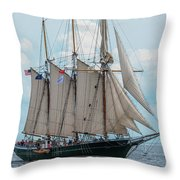 Denis Sullivan Throw Pillow