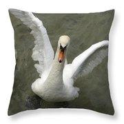 Denmark, Copenhagen Swan Flaps Her Wing Throw Pillow
