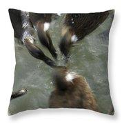 Denmark Group Of Ducks Ducking Throw Pillow