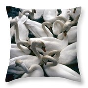 Denmark Swans Gathered On A Lake Throw Pillow