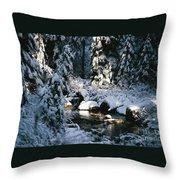 Denny Creek Throw Pillow