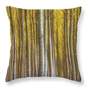 Dense Forest Of Poplar Trees In Boardman Oregon During Fall Throw Pillow