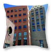 Denver Public Library Throw Pillow