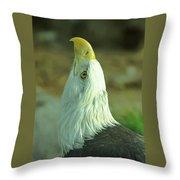 Denver Zoo Throw Pillow