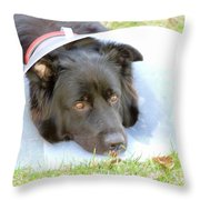 Depressed Dog Throw Pillow