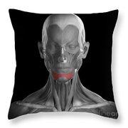 Depressor Labii Inferioris Throw Pillow