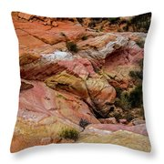 Depth Of The Canyon Throw Pillow