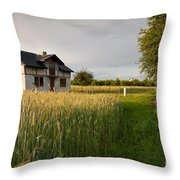 Derelict Disused House In Field Throw Pillow