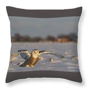 Des Ailes D'ange. Throw Pillow
