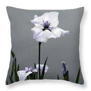 Desaturated Japanese Water Iris 2707 H_5 Throw Pillow