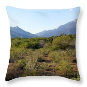 Desert And Mountains In Mexico Cabo Pulmo Throw Pillow