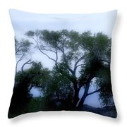 Desert At Night Throw Pillow