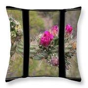Desert Cactus Triptych Throw Pillow