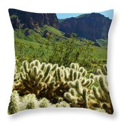Desert Cholla 1 Throw Pillow