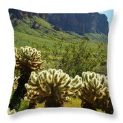 Desert Cholla 2 Throw Pillow