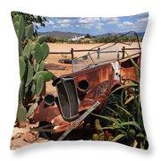 Desert Classic Throw Pillow