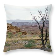 Desert Colors Throw Pillow