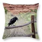 Desert Elements 11 Throw Pillow