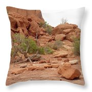 Desert Elements 5 Throw Pillow